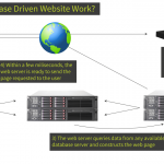Database Driven Websites from Total SEO Services