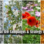 Seasonal SEO – Optimise Your Site For the Holiday Seasons